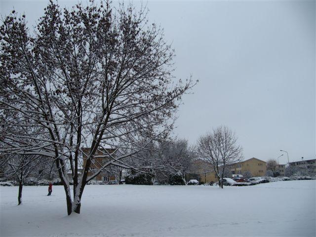 neige018.jpg