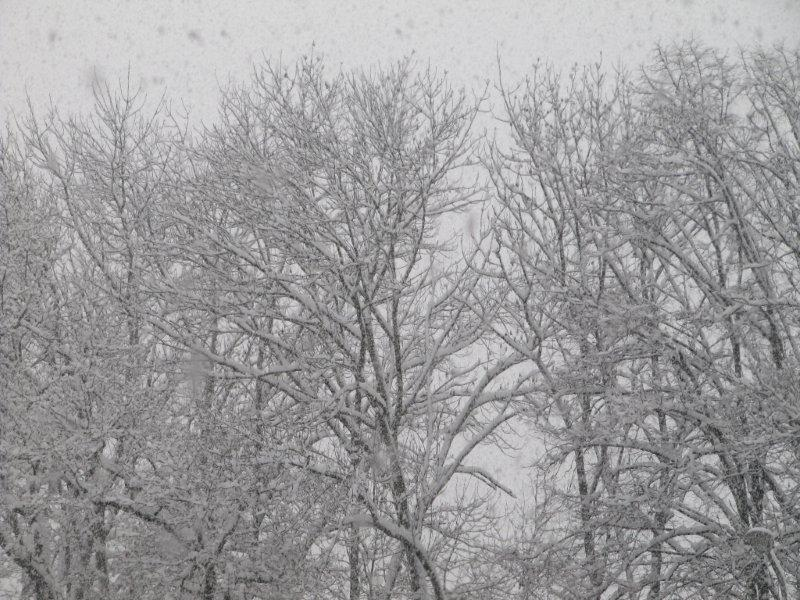 neige025.jpg