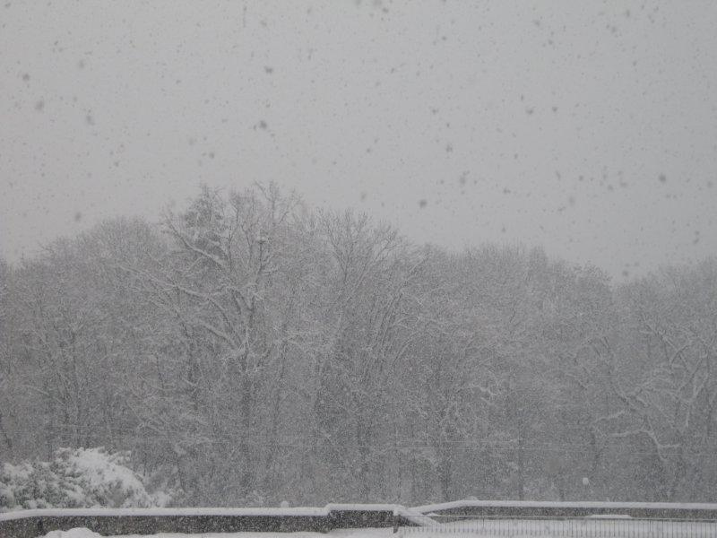 neige026.jpg