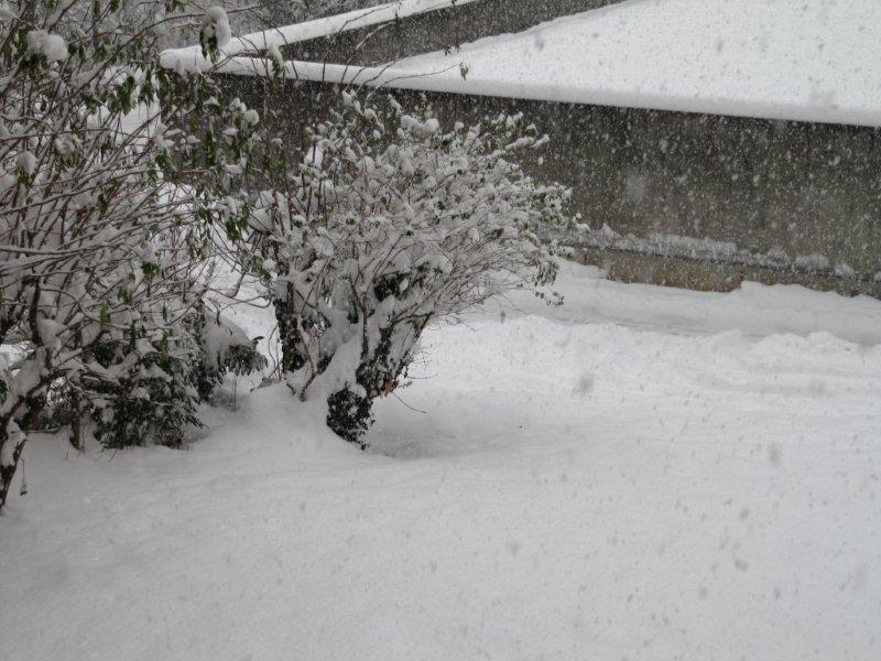 neige027.jpg