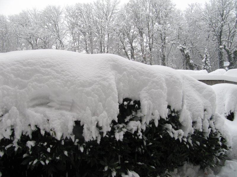 neige029.jpg