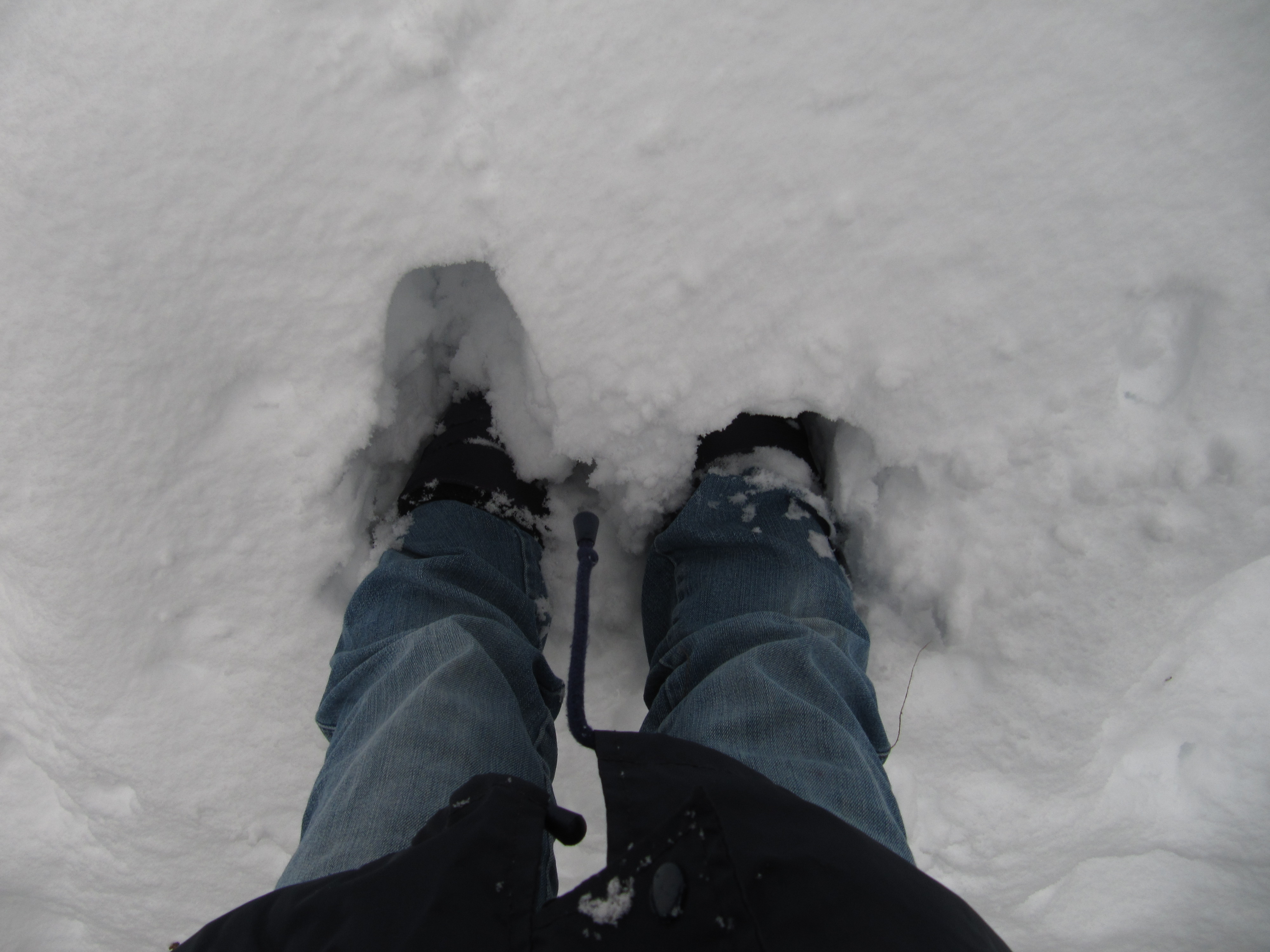 neige034.jpg