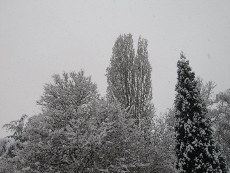 neige043.jpg