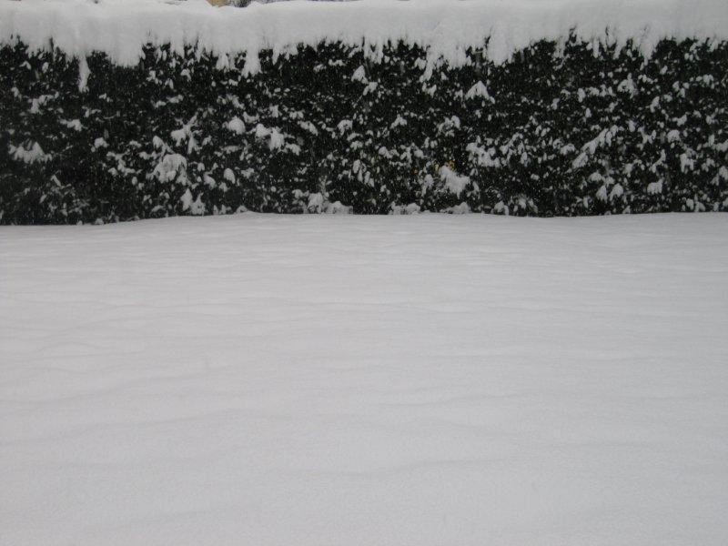 neige046.jpg