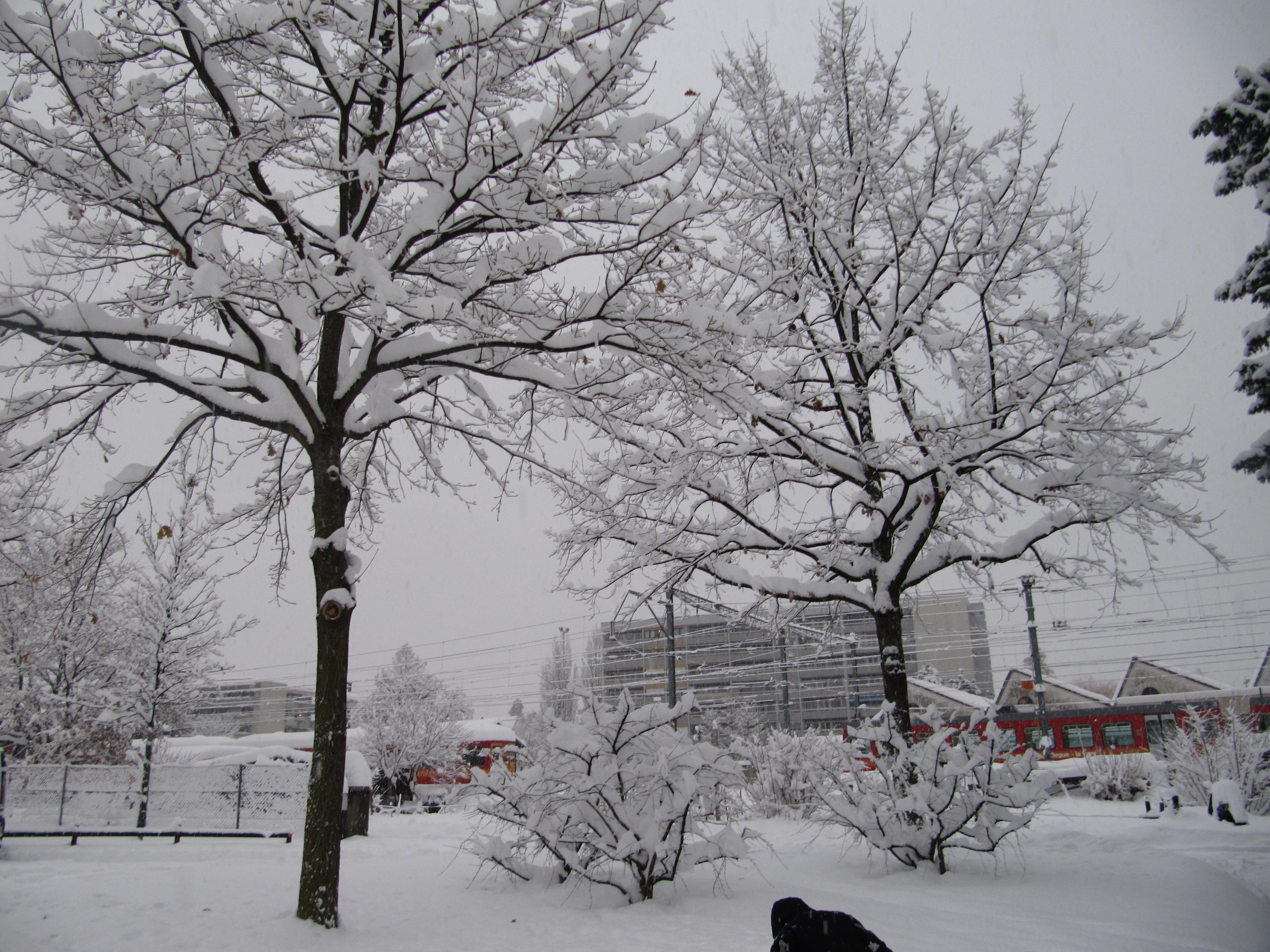 neige055.jpg