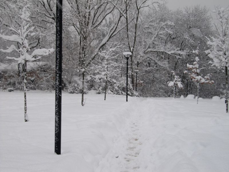 neige056.jpg