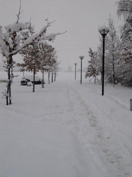 neige059.jpg