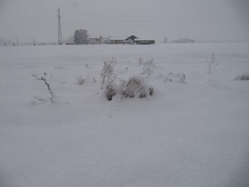 neige060.jpg